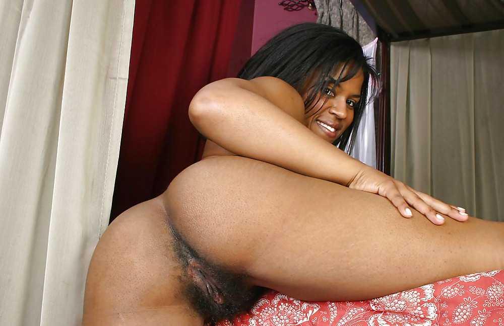 Free big ebony ass